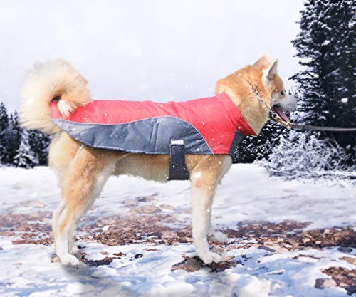 Mosnai Dog coat Jacket Polar Fleece Lined