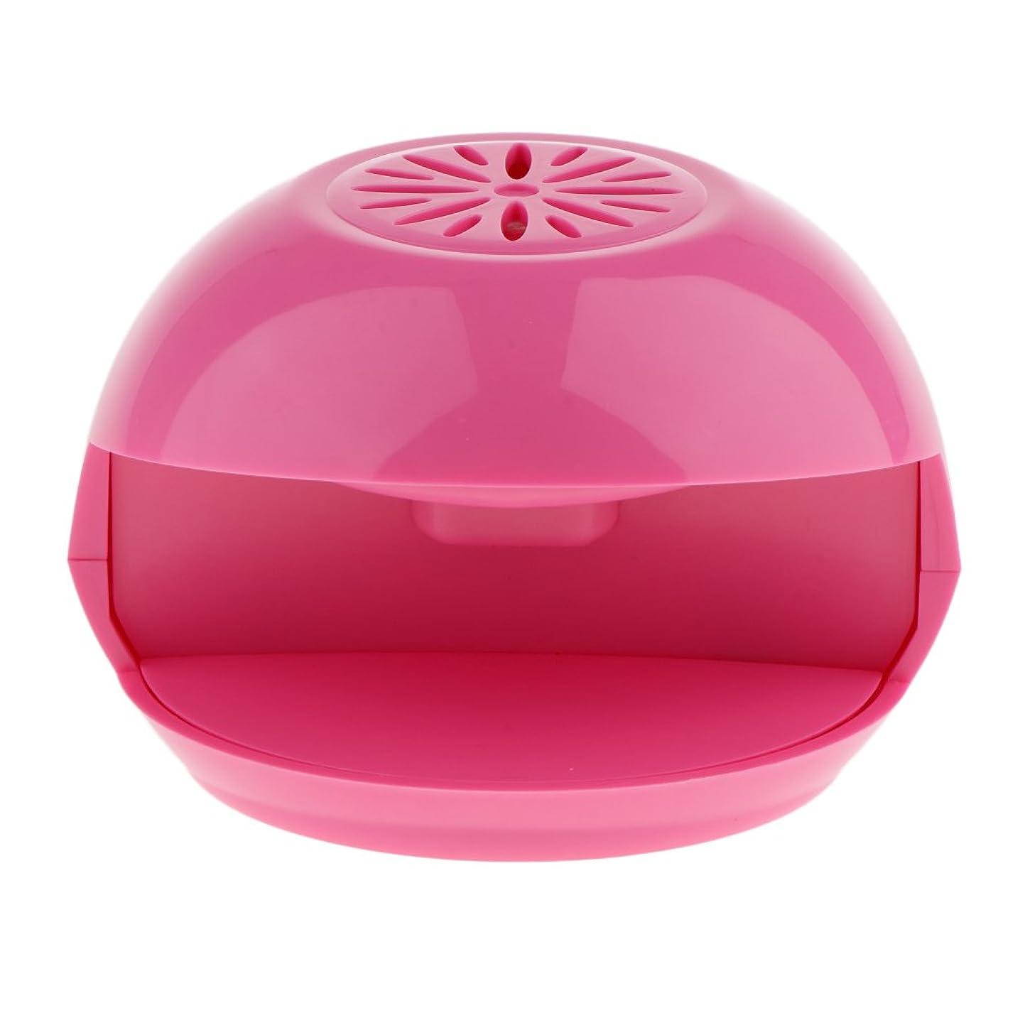 ほんの機知に富んだ欠員Kesoto ネイルドライヤーファン ミニ 電動 ネイルアート ドライヤー エアーブロワー DIY マニキュア ポーランド 乾燥ファン ピンク