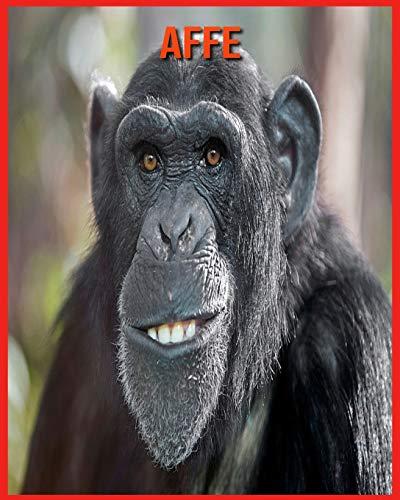 Affe: Erstaunliche Fakten über Affe