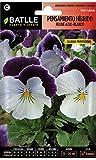 Semillas Batlle - Semillas de Flores Pensamiento Híbrido Feline Azul-Blanco