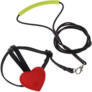 Blesiya Heart-Shaped Parrot Bird Harness with Leash for Budgies, Cockatiels, Finches, Macaws, Etc. - Black, S