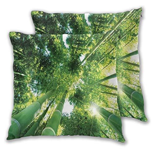 ELIENONO 2 Stück Deko-Kissenbezug 60x60cm,Low Angle View von Bambusbaumspitzen Asian Zen Tranquil Lands Dschungel Meditation Spa Thema quadratisch Kissenbezüge für Sofa Bett Wohnzimmer Schlafzimmer