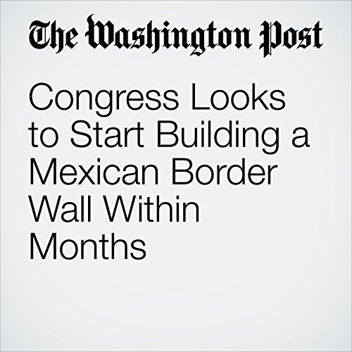 Congress Looks to Start Building a Mexican Border Wall Within Months copertina