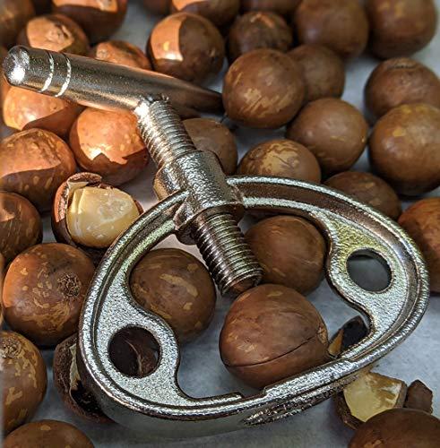 万力天宮屋 マカデミア マカダミアナッツ 殻割り器セット 美味しいので社長がとつぜん仕入れた 殻付き ロースト400g