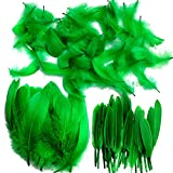 250pcs Assorted Coloured Feathers Natural Crafts Feathers Goose Plume for Art Hats Costume Masks Wedding Children's Birthday Party Dream Catchers Decoration 10-18cm(Green)