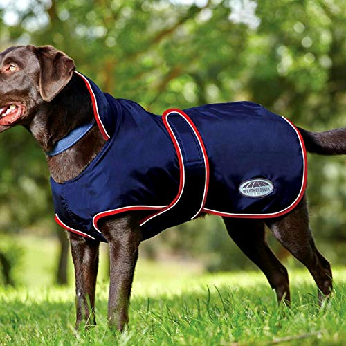 Weatherbeeta Windbreaker 420D with Belly Wrap Dog Jacket 65cm Navy/Red/White