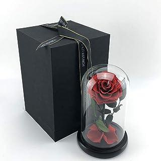 هدية عيد الحب وردة حمراء محفوظة ضمن قبة زجاجية للتعبير عن الحب الأبدي هدية لها بمناسبة الذكرى السنوية واعياد الميلاد، وردة...