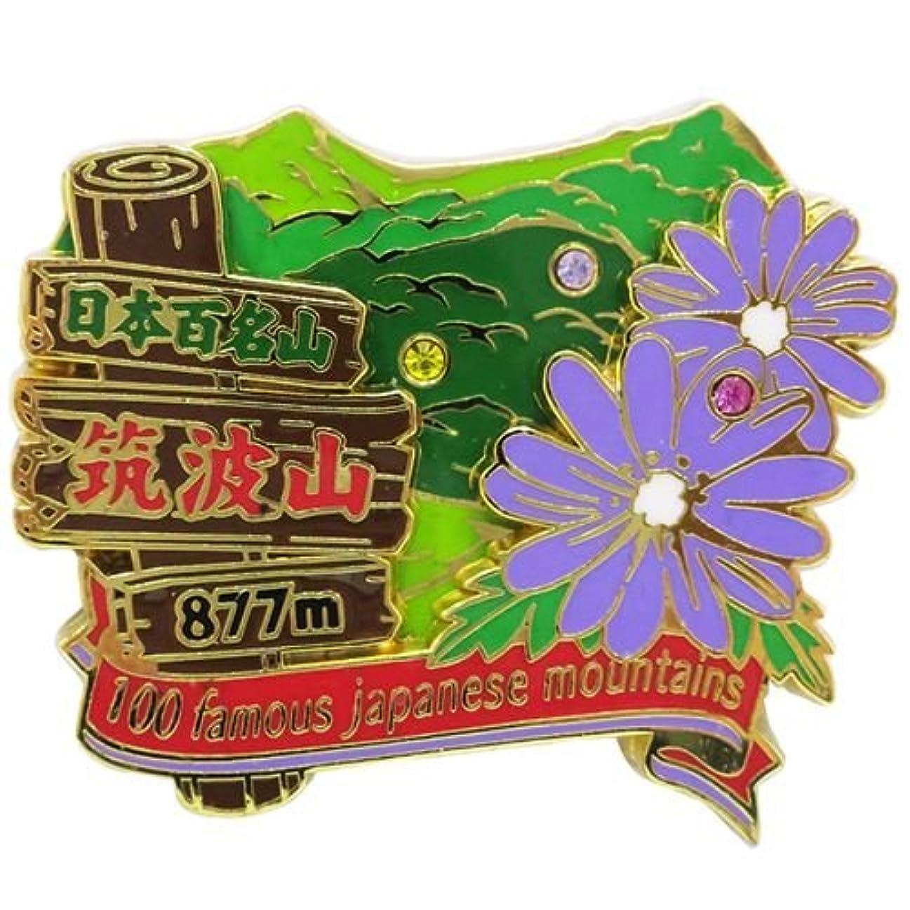 破裂発生器リマーク日本百名山[ピンバッジ]2段 ピンズ/筑波山 エイコー トレッキング 登山 グッズ 通販