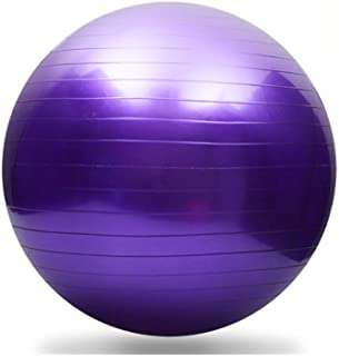 Thickening Total Body Balance Ball Kit - Includes Anti-Burst Stability Exercise Yoga Ball, Workout Program- 26 inch Purple