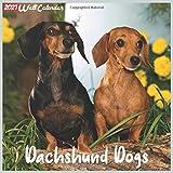Dachshund Dogs 2021 Wall Calendar: Official Dachshund Dogs Calendar 2021, 18 Months