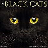 Just Black Cats 2021 Wall Calendar