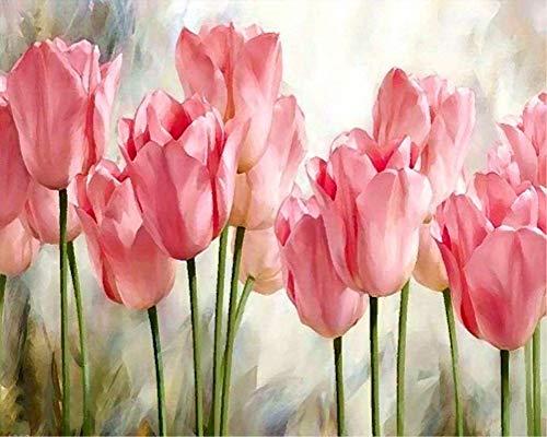 YEESAM ART DIY Ölgemälde Malen nach Zahlen Erwachsene Kinder, Rosa Tulpe Blumen Zahlenmalerei ab 5 Öl Wandkunst (Tulpe, mit Rahmen)