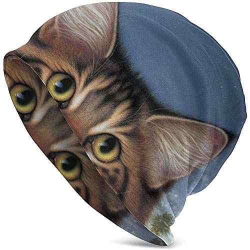 Uosliks Wildlife Art Cat Food Today Goldfish Catatonic...