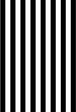 Renaiss 3x5ft Black and White Stripes Photo