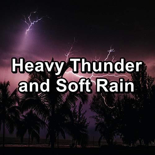 Rain Drops Beneath the Sunny Beam with Thunder