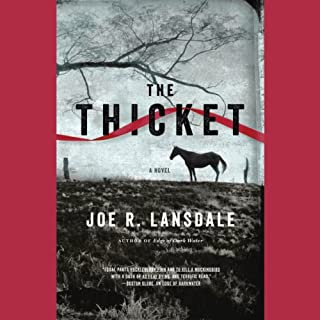 The Thicket audiobook cover art