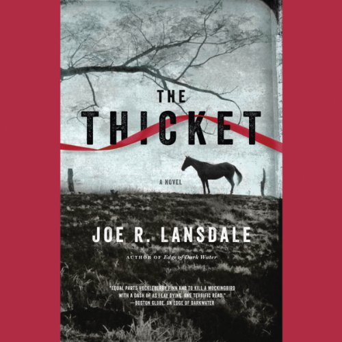 The Thicket cover art