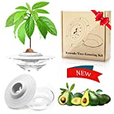 Avocado Plant Starter Tray,iBayx Avocado Tree Growing Plant Bowl Garden Germinator,Cool Garden Gifts for Women and Family
