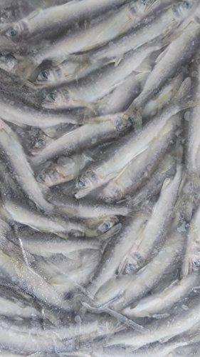 国産 ( 滋賀県 ) 冷凍 稚 あゆ ( 大 ) 1kg ( 匹約11g ) 若鮎 鮎 加熱用