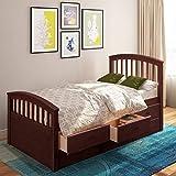 Danxee 6 Drawers Platform Daybed Twin Frame Captains Bed Bedroom Furniture (Espresso)