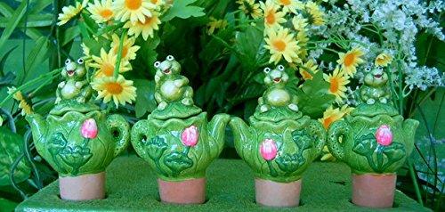 Wasserspender Set für Zimmerpflanzen Frosch auf Kanne