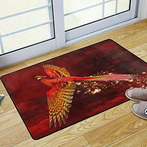 FANCYDAY Ruimte Tapijt voor Badkamer Rood Phoenix Bird Anti-Slip Welkom Wasbare Deurmat voor Keuken Outdoor Porch Tapijt 36 x 24 in 2043234