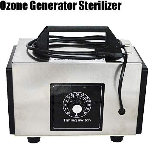 TIANXIAWUDI Ozonizador,Generador de ozono esterilizador con purificador de Interruptor de Tiempo Purificador de Aire Ozonizador Máquina de Perfume Ozon Generador O3 Ozonizador