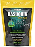 Nutramax Dasuquin with MSM Soft Chews Large Dog 84 Count