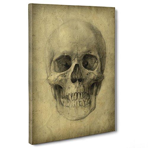 Cuadro sobre lienzo, enmarcado, listo para colgar, Leonardo da Vinci, Studio Anatomía Calavera, Cirugía