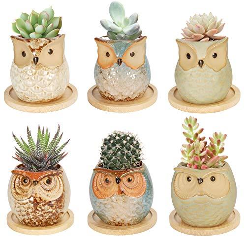 Colmanda 6 Pack Mini Macetas Ceramica, Búho Macetas para Cactus de Cerámica, Set Macetas...