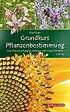 Grundkurs Pflanzenbestimmung: Eine...