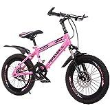 FUFU Kinder Bicycles18 / 20-Zoll-Jungen Und Mädchen Bikes Variable Speed Bergkinderfahrrad...