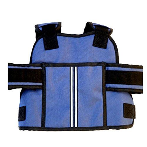 Motorfiets-veiligheidsgordel voor kinderen, veilige gordeldrager voor elektrische voertuigen blauw