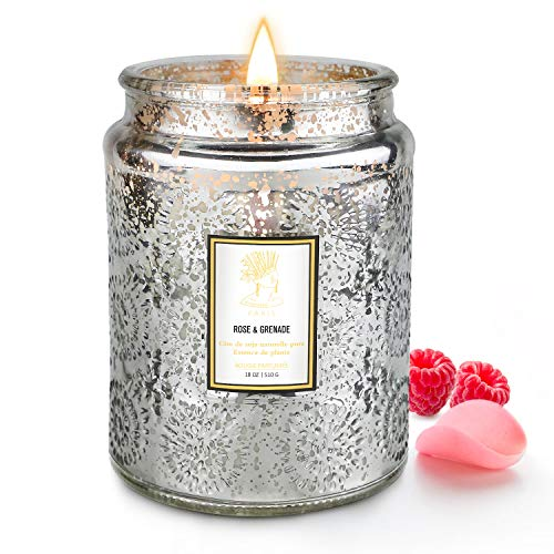 Candle for Home Scented, 18 oz Large Soy Wax Aromatherapy Candle with Embossed Glass Jar, 100 Hours...
