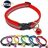 ID-Halsbänder für Welpen, Hunde, Katzen, verstellbare Länge, 6 Farben, Größe 19-32 cm