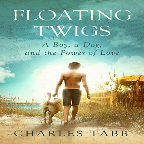 Floating Twigs audiobook cover art