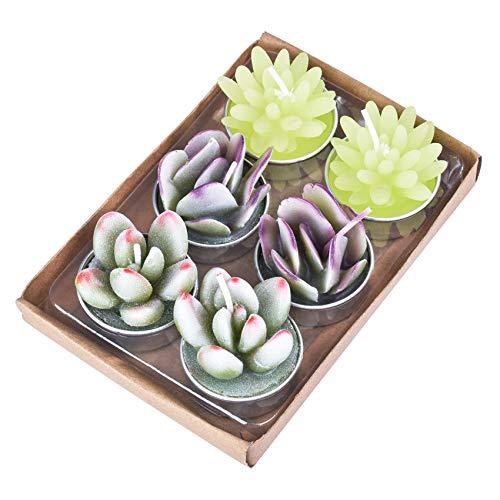 Jiechang Juego de 6 velas coloridas de cactus, velas decorativas delicadas, suculentas artificiales hechas a mano, delicadas velas de cactus suculentas para fiestas, bodas, regalos de spa