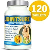 JOINTSURE condroprotector Perros| 120 Comprimidos | con mejillón de Labio Verde, glucosamina y condroitina Natural. | Este antiinflamatorio para Perros.