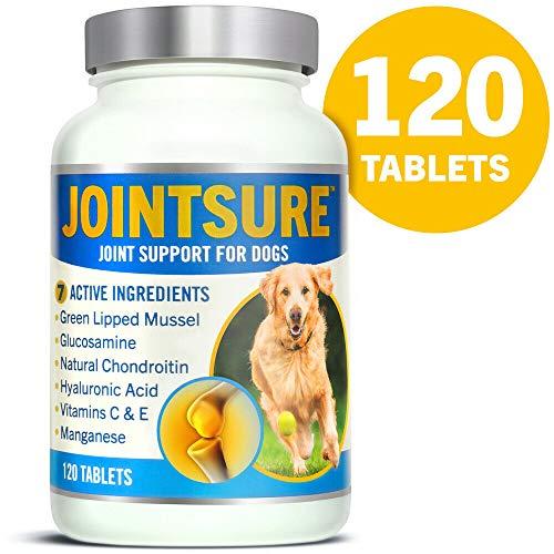 JOINTSURE Nahrungsergänzungsmittel Gelenktabletten Hund | 120 Tabletten | Mit Grünlippmuschel, Glucosamin und natürlichem Chondroitin für die Gelenkgesundheit von Hunden