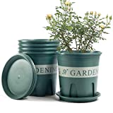 Plant Pots Indoor 7.87 Inch Plastic Flower Planters with Drainage Hole and Saucer Tray 5 PCS for All Home Garden Flowers