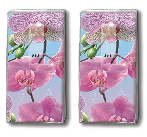 20 Taschentücher (2x 10) Bright Orchid – Schillernde Orchidee / Blumen / Motivtaschentücher