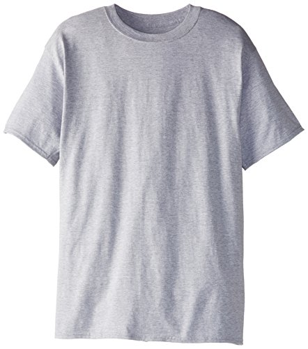 Hanes Size Men's Beefy Short Sleeve Tee Value Pack (2-Pack), Light Steel, Large/Tall