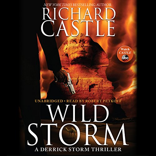 Wild Storm audiobook cover art