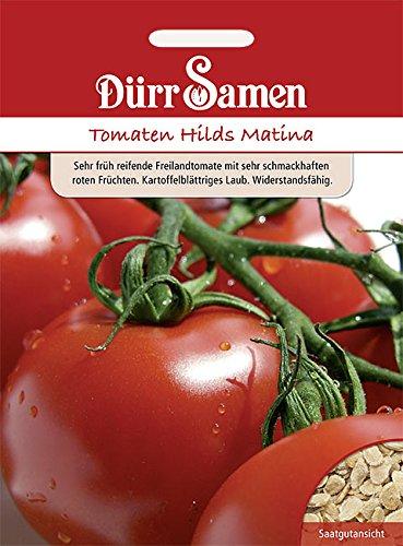 Dürr Samen Tomaten Hilds Matina, früh, sehr süß, Freiland