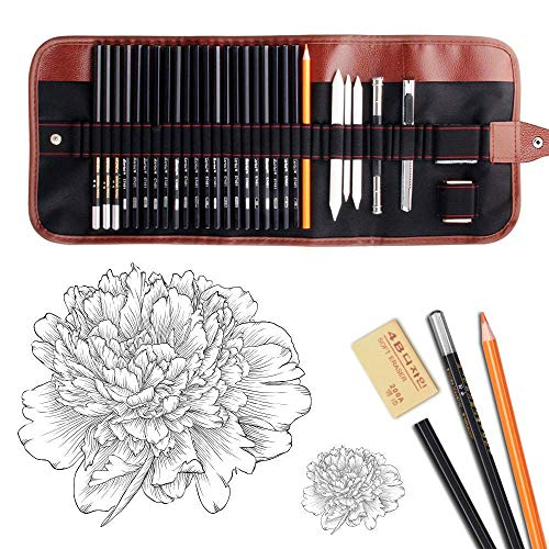 Dowswin 30 Pieces Sketch Pencils Charcoal Drawing Set Sketching Pencil Set of Graphite Pen Eraser Craft Sharpener Knife Pencil Extender Roll up Canvas Carry Pouch Pro Art Supplies for Beginners Artist