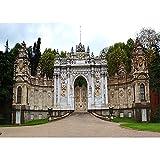 Fondo de fotografía de Vinilo Accesorios de Fondo de fotografía de Puerta de Madera clásica Accesorios de fotografía de Estudio fotográfico A30 9x6ft / 2,7x1,8 m