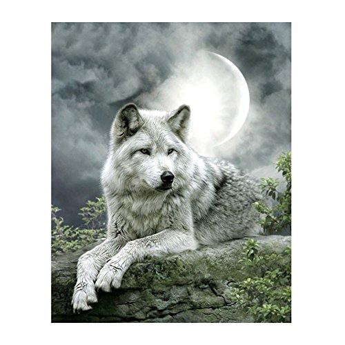DOMYBEST Moonlight Loup 5D Diamant DIY Peinture Artisanat Décor à la Maison