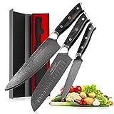 Cuchillo del cocinero 3pcs Damasco cuchillos del cocinero japonés VG10 del cuchillo de cocina 67 capas de acero al carbono de alta Santoku Cuchillo Cooking G10 Mango (Kitchen Knife Size : 3pcs Set)