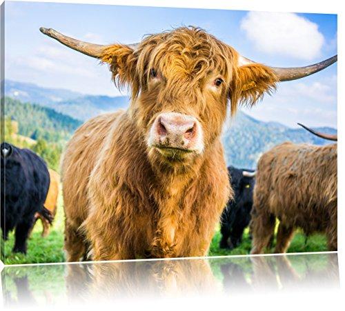 Pixxprint Blick Einer Kuh an der Weide als Leinwandbild | Größe: 80x60 cm | Wandbild | Kunstdruck | fertig bespannt