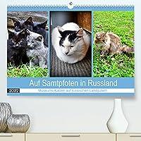 Auf Samtpfoten in Russland - Museums-Katzen auf russischen Landguetern (Premium, hochwertiger DIN A2 Wandkalender 2022, Kunstdruck in Hochglanz): Katzen auf den ehemaligen Landguetern russischer Dichter (Monatskalender, 14 Seiten )